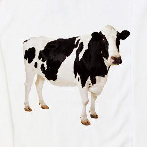 krowa_zoom